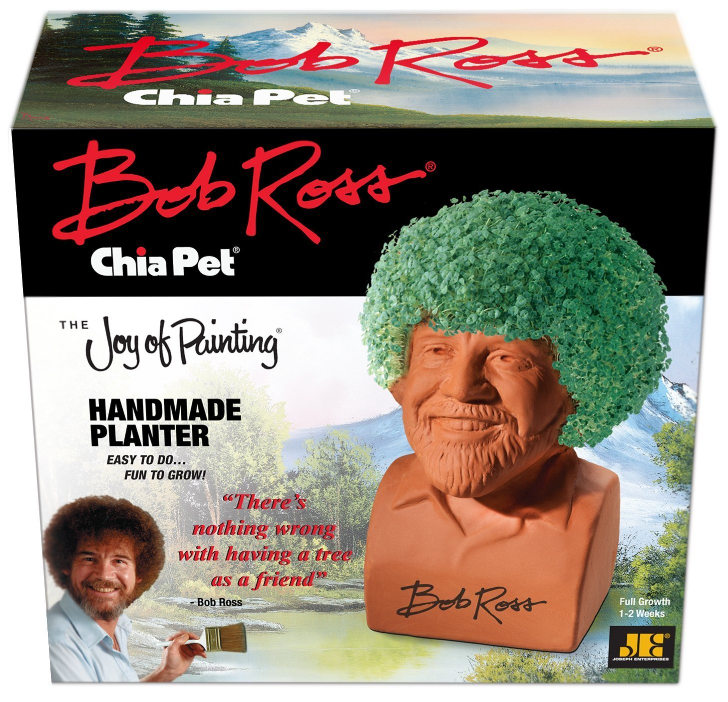 Amazoncom Chia Pet Bob Ross With Seed Pack Decorative Pottery