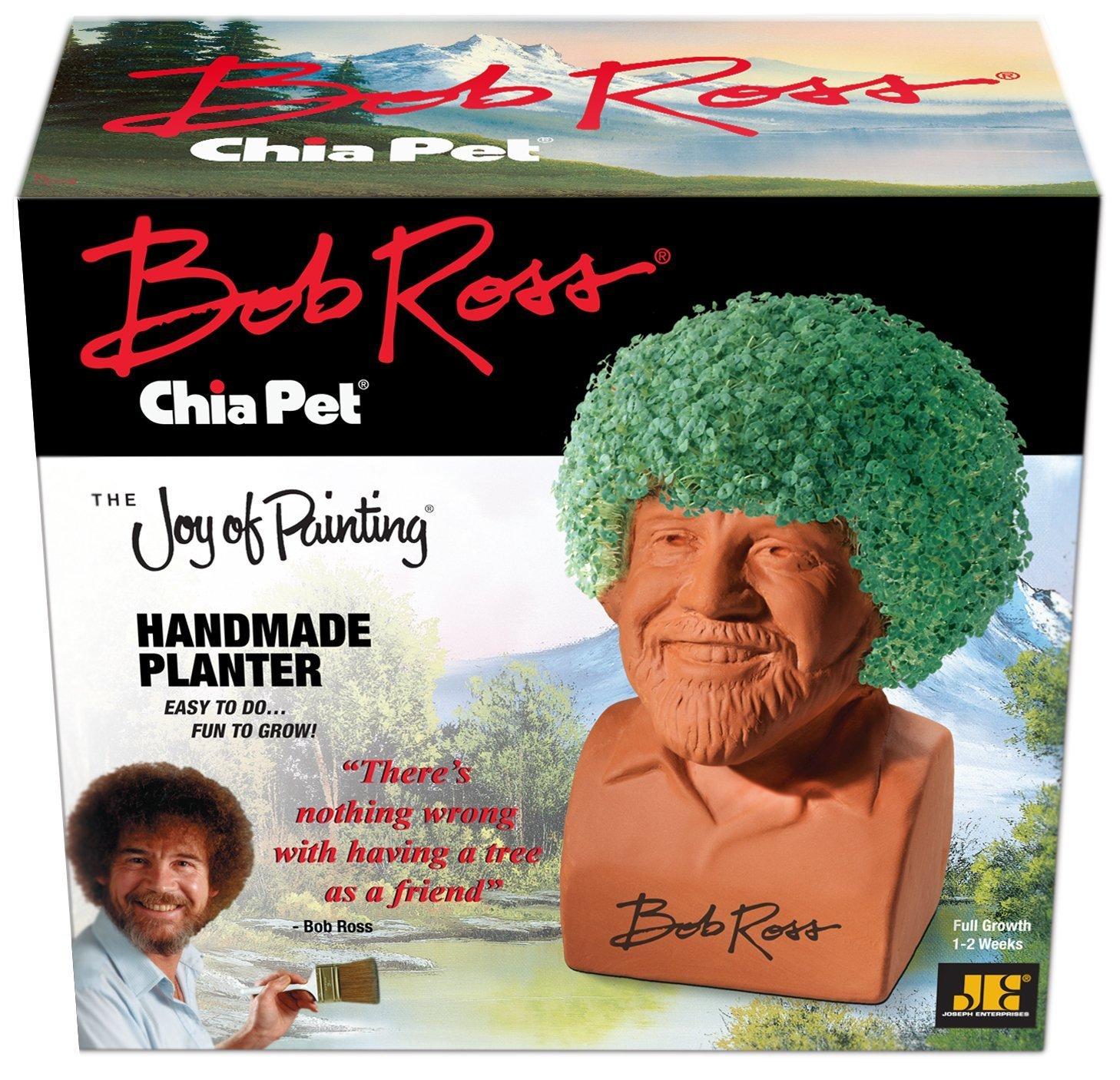 Amazoncom Chia Pet Bob Ross The Joy Of Painting Decorative