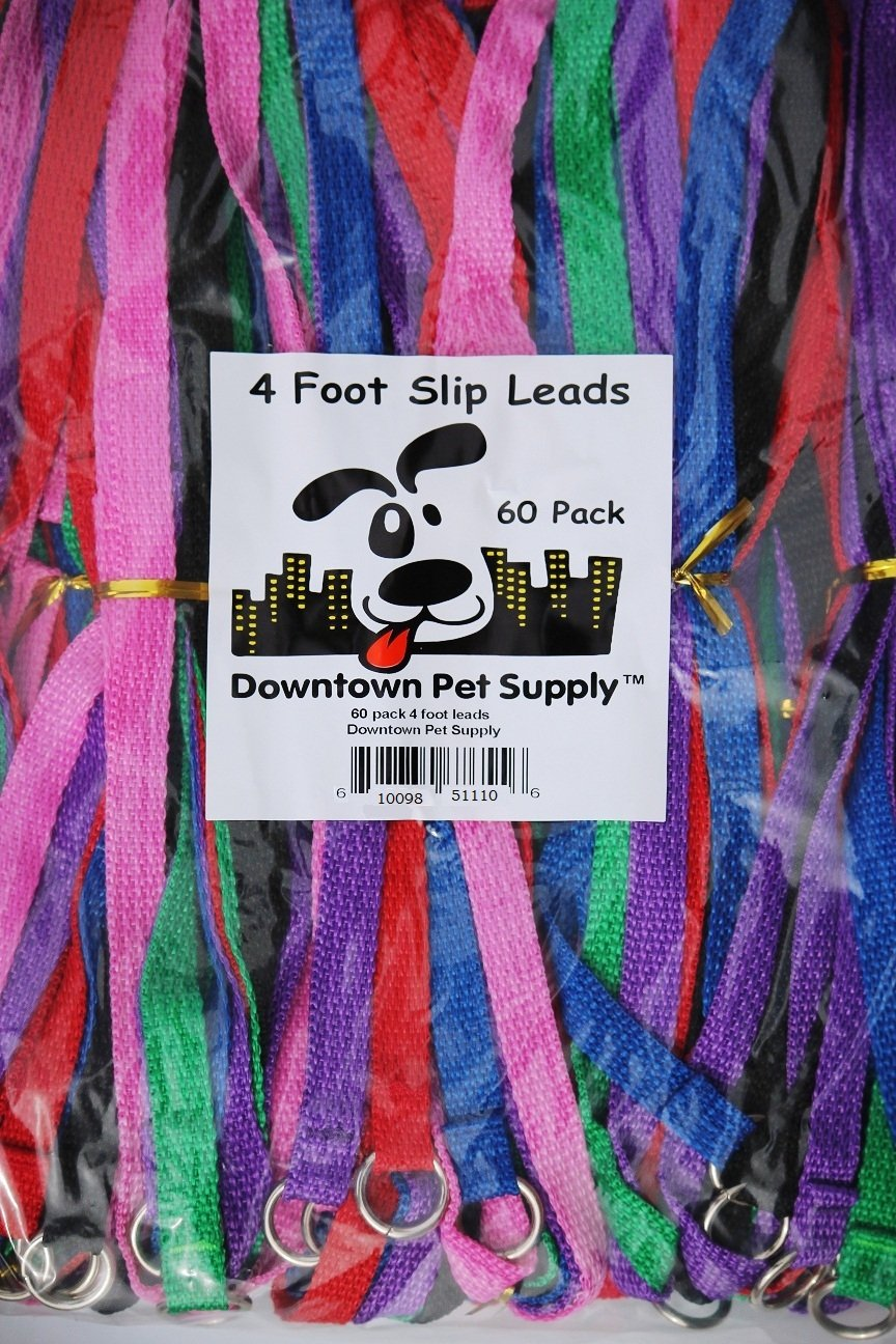 Downtown Pet Supply Slip Leads Kennel Leads with O Ring for Dogs Pet Animal Control Grooming, Shelter, Rescues, Vet, Veterinarian, Doggy Daycare (Pack of 60)