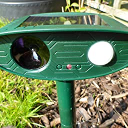 Picturesque  Ultrasonic Cat And Pest Control Repellent For Gardens  Humanely  With Inspiring I Especially Like The Solarfeature Of This Catoff Repellerread More  With Astonishing Garden Tool Carrier Also Royal Garden Kingston Ma In Addition Magic Garden Hose And Fantasy Garden As Well As Landscape Gardeners West Yorkshire Additionally Pvc Garden Shed From Amazoncouk With   Inspiring  Ultrasonic Cat And Pest Control Repellent For Gardens  Humanely  With Astonishing I Especially Like The Solarfeature Of This Catoff Repellerread More  And Picturesque Garden Tool Carrier Also Royal Garden Kingston Ma In Addition Magic Garden Hose From Amazoncouk
