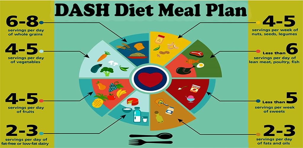 dash weight loss diet reviews