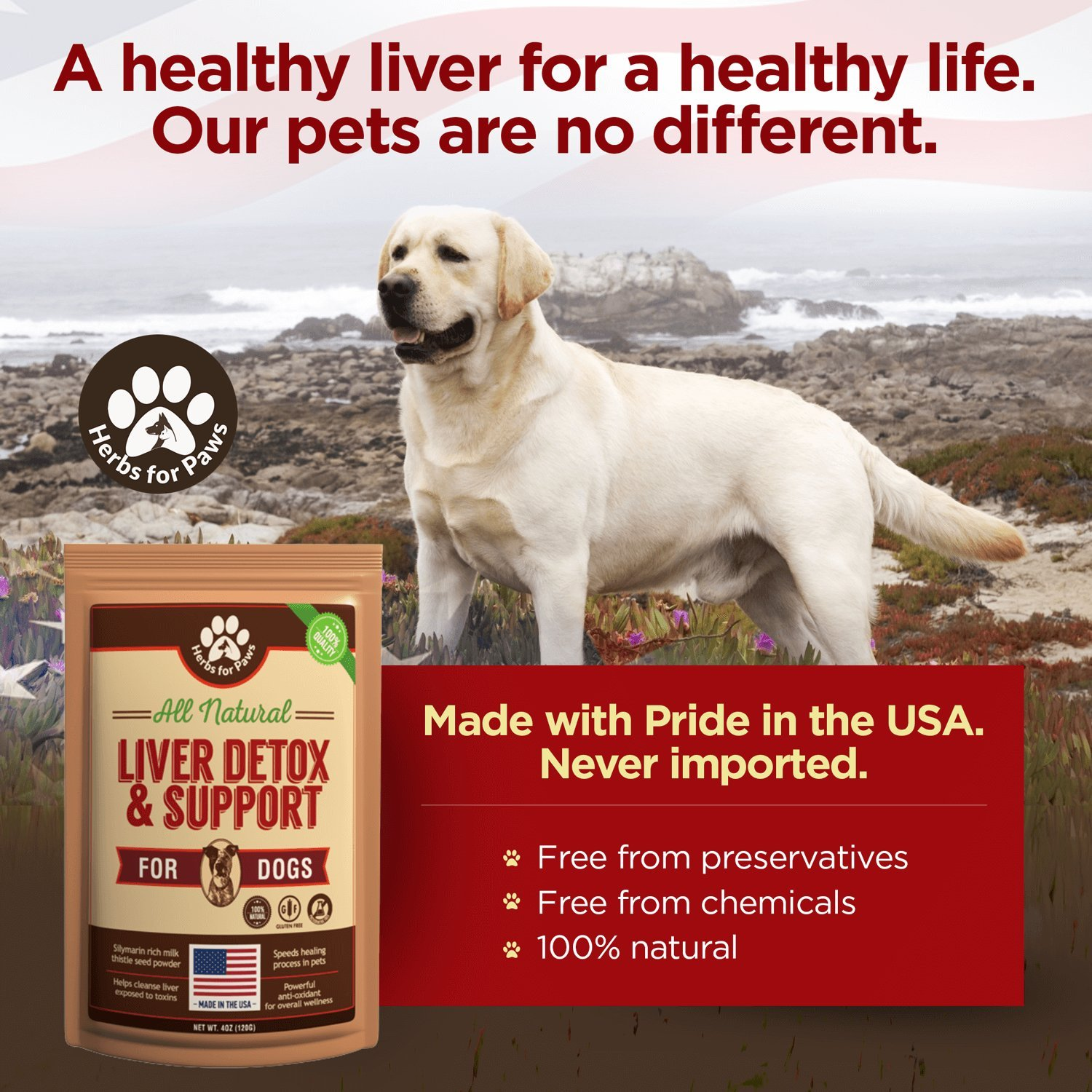 Liver Support For Dogs Milk Thistle For Dogs And Cats