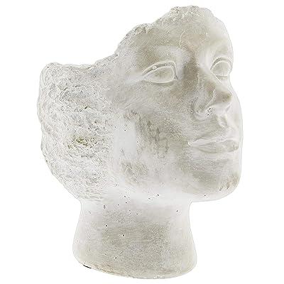 """Lucky Winner Whitewashed Cement Stone Statue Head Planter (9.5"""") : Garden & Outdoor"""