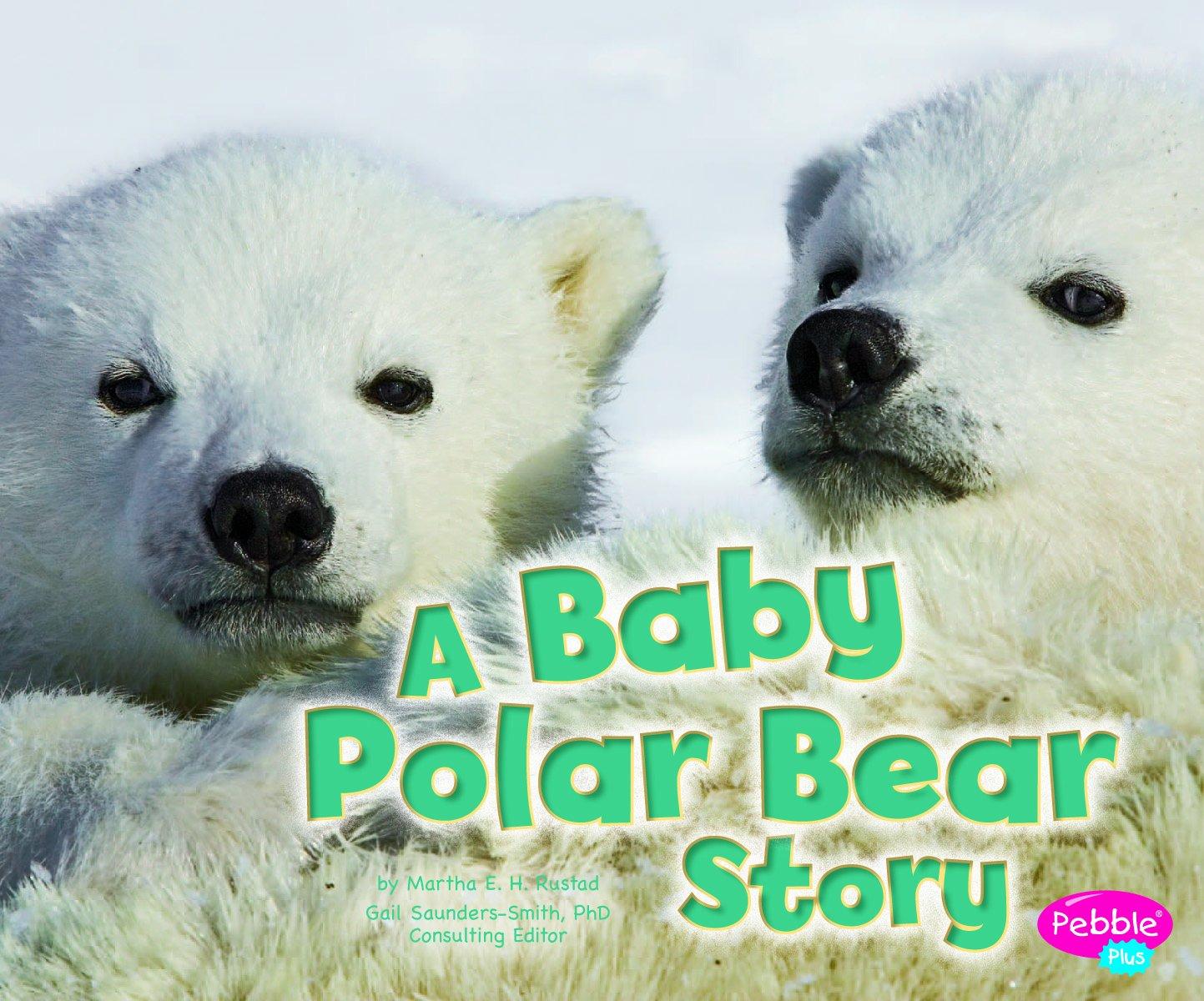 Uncategorized Baby Bear Story baby polar bear story animals martha e h rustad 9781429670937 amazon com books