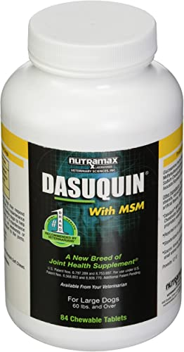 Nutramax Laboratories Dasuquin MSM Chewable Tablets for Large Dogs 84ct