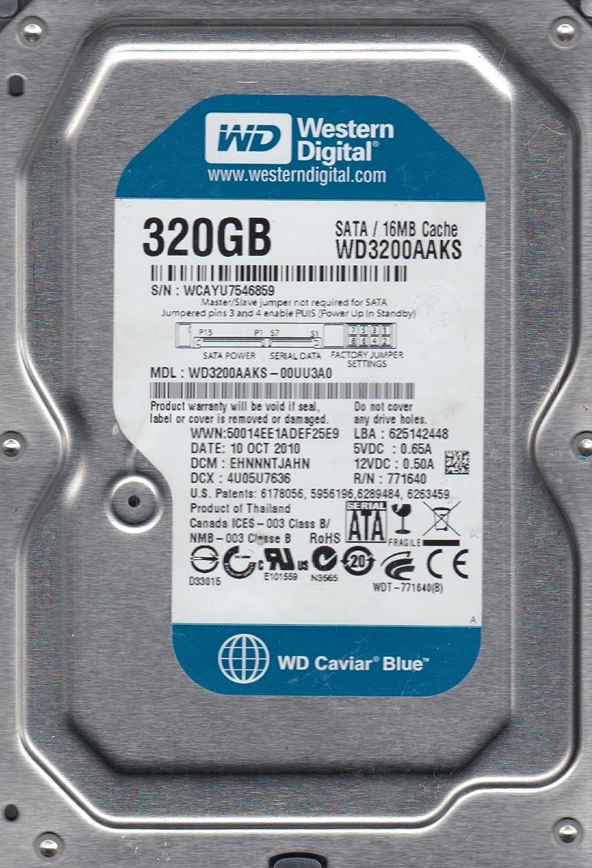 Internal Hard Drive Western Digital WD3200AAKS-00UU3A0 320GB