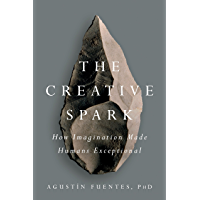 The Creative Spark: How Imagination Made Humans Exceptional (English Edition)