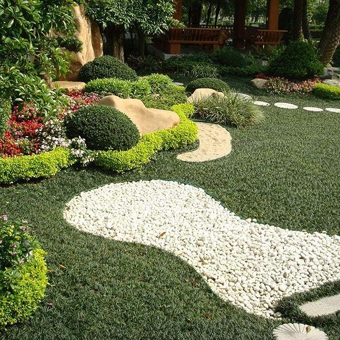 Byjia Jardín Paisaje Bobina de Borde, Tablero de la terraza ...