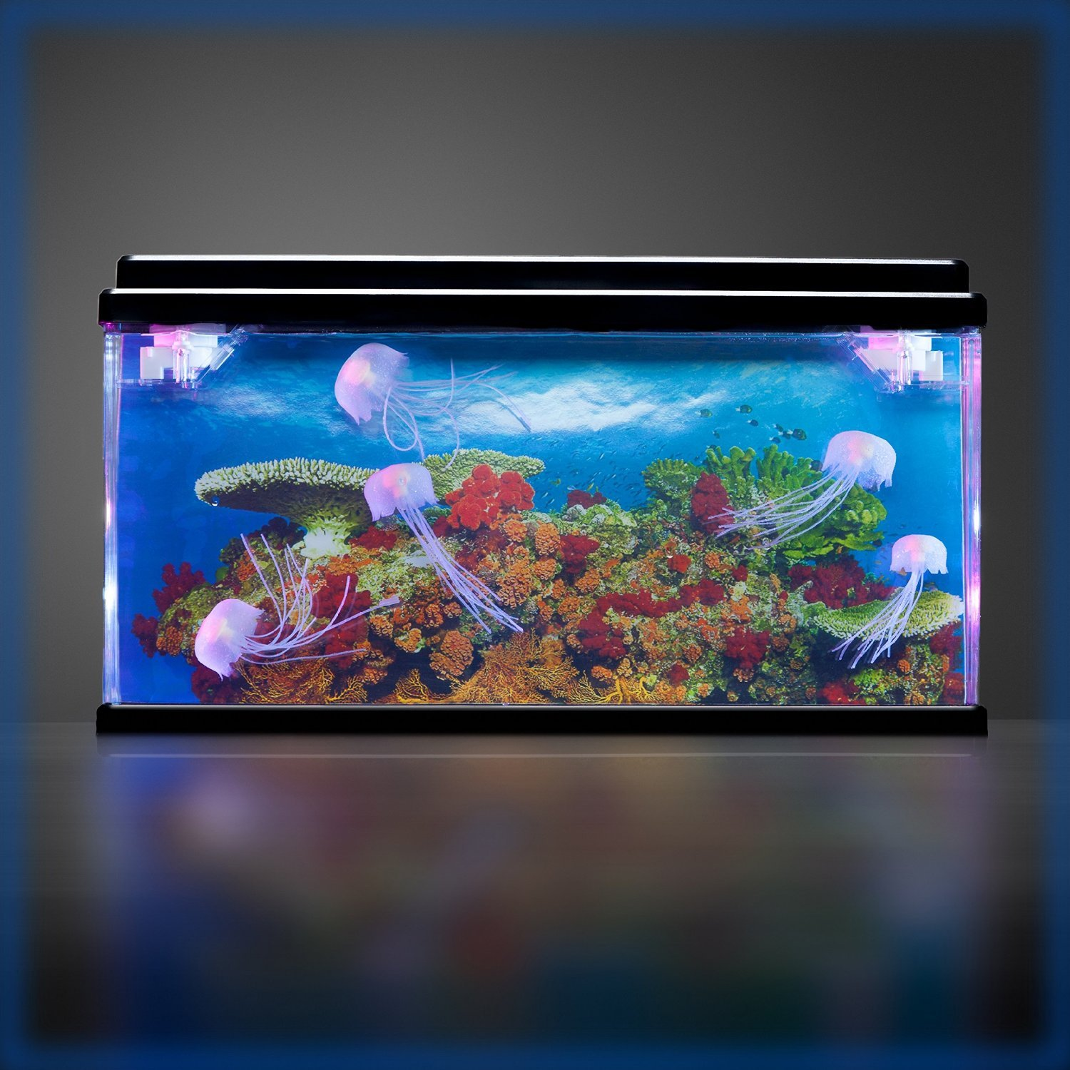 Playlearn USA Jelly Fish/Sea Turtle Aquarium Mood Lamp With LED Lights 3D Backing - Stunning! Fantastic Gift (Jellyfish)