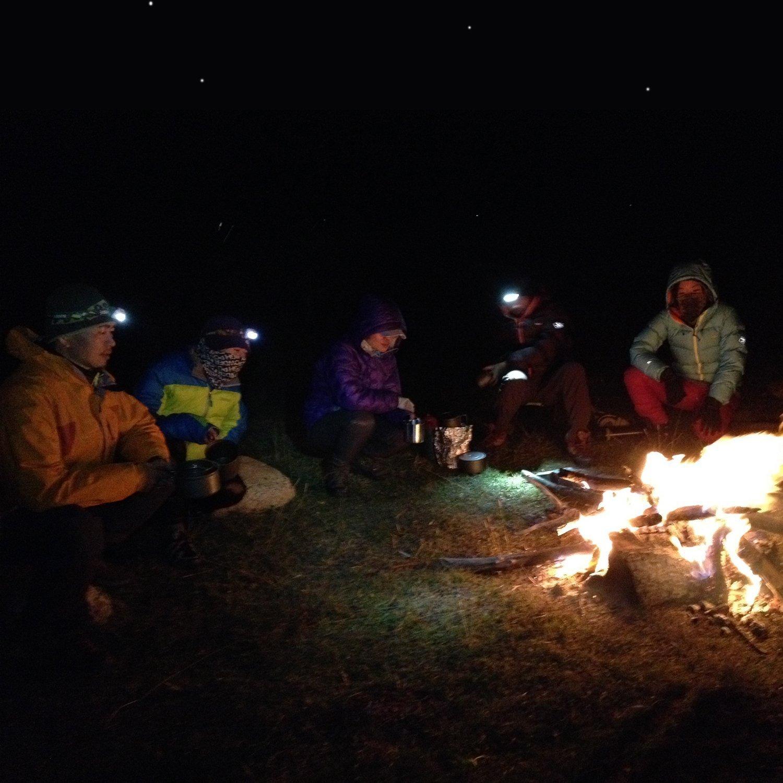 Amazon.com: Gshine - Farol de acampada con pilas, linterna ...