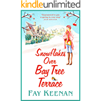 Snowflakes Over Bay Tree Terrace: A warm, uplifting, feel-good novel for winter 2020 (Willowbury Book 2)