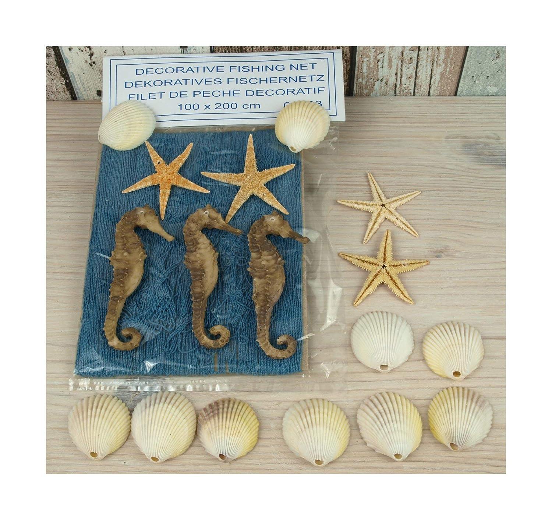 10 Muscheln 12 Fische aus Holz maritime Deko Deko Fischernetz 1x2m beige