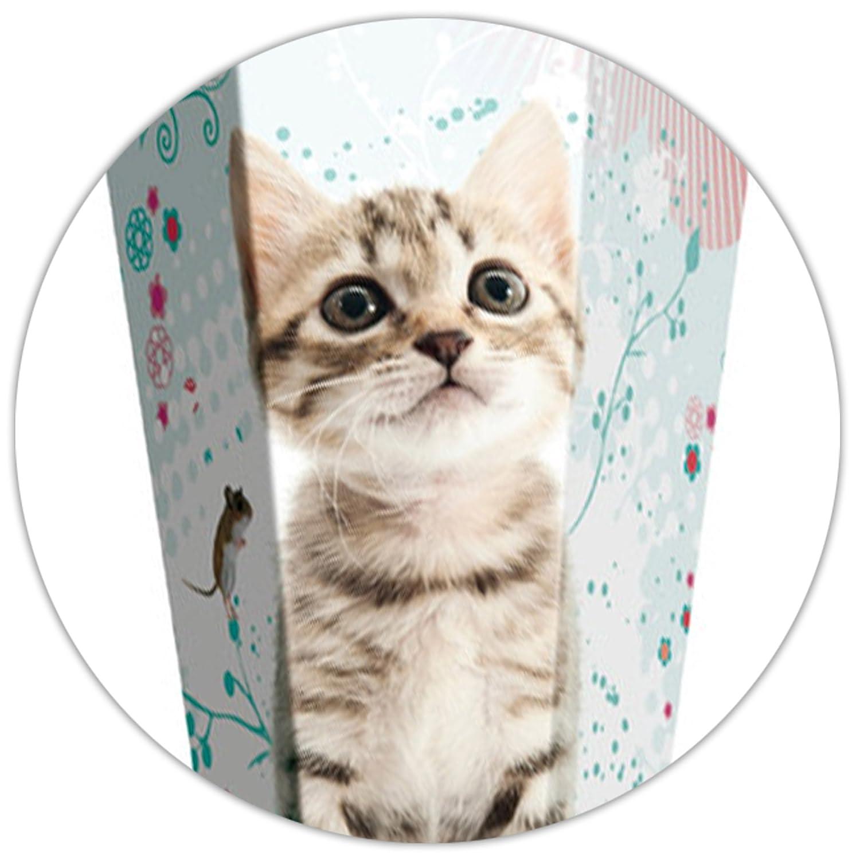 Alles-meine  GmbH GmbH GmbH 10 Stück _ Schultüten -  süße Katze & Blaumen  - 35 cm - rund - incl. individueller Schleife - mit Namen - mit Tüllabschluß - Zuckertüte - mit   ohne Holzspi.. B07DVQSLYP | Neuheit  | Outlet  | Spie 0d8fe9