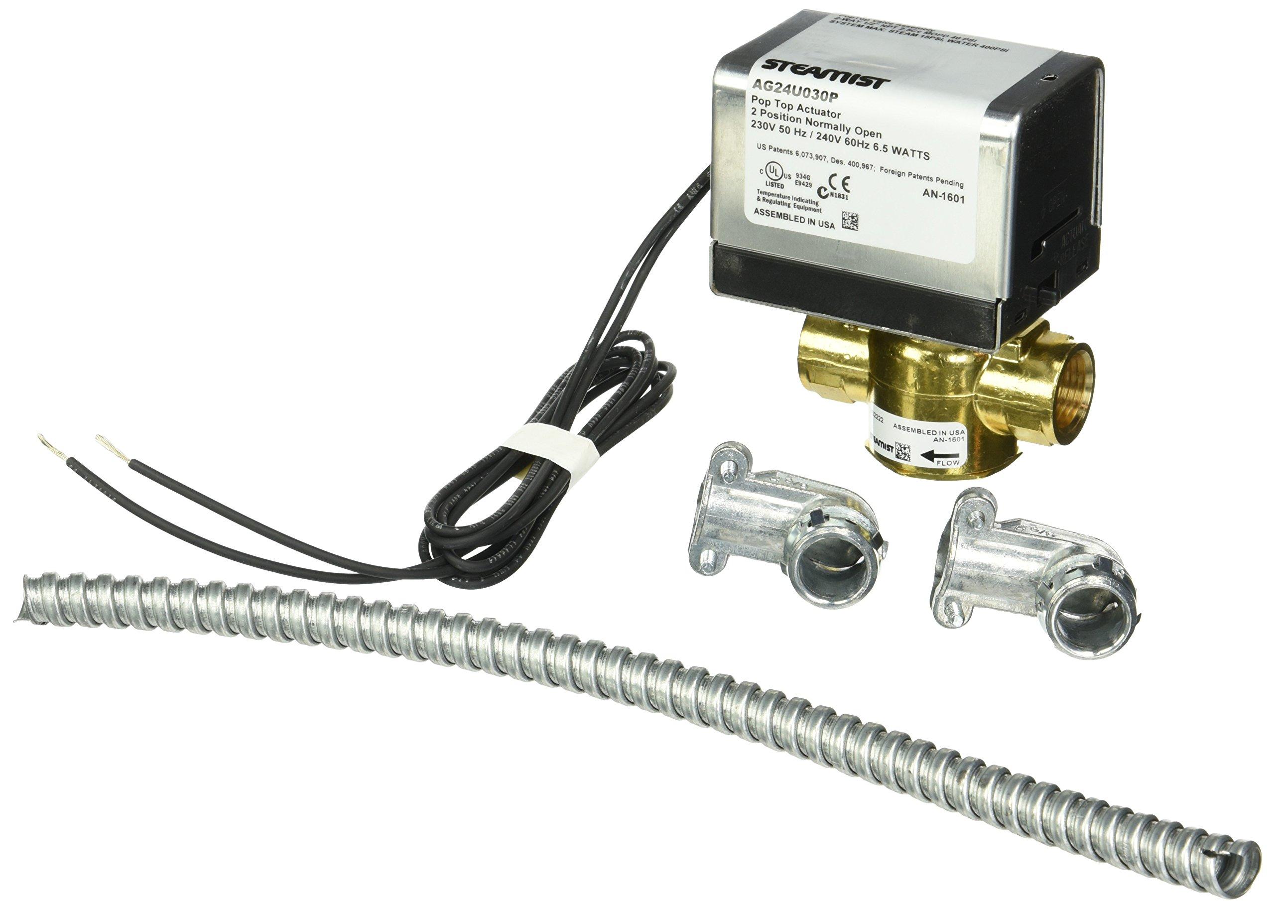Steamist SM-900 240-Volt Auto Drain