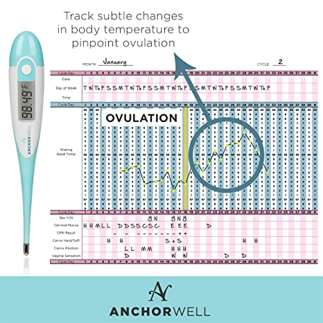 Amazon digital basal thermometer for ovulation tracking bbt 1 amazon digital basal thermometer for ovulation tracking bbt 1100th accuracy bundled with 3 pregnancy tests by wondfo for natural family planning fandeluxe Images