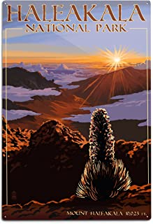 product image for Lantern Press Haleakala National Park - Sunrise 79931 (6x9 Aluminum Wall Sign, Wall Decor Ready to Hang)