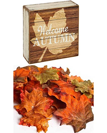 Amazon Fall Decorations Welcome Autumn Plaque Entryway Sign