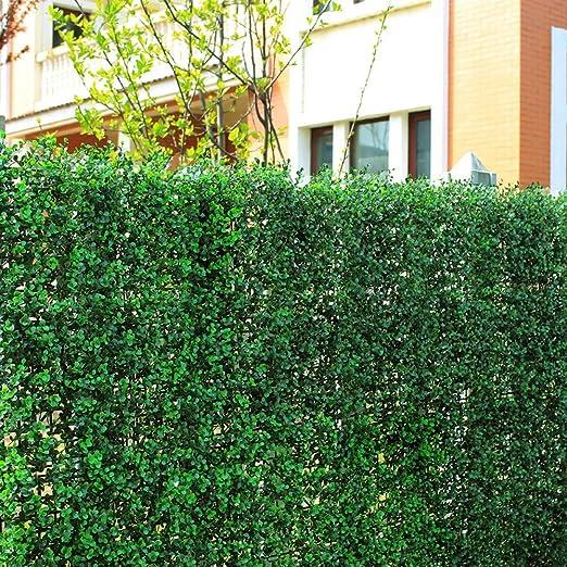 Valla de plantas artificiales, setos y bojes decorativos, de privacidad, valla cubierta, 100% fresco, de polietileno, protección UV, para jardín, adornos, DIY, 1 m²: Amazon.es: Jardín