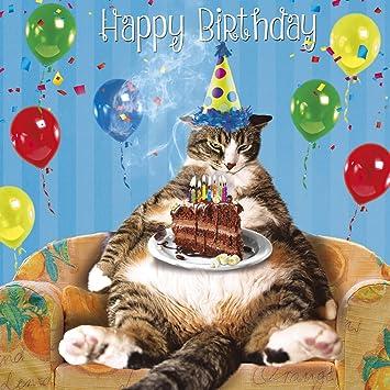 Fat Cat Singing Happy Birthday