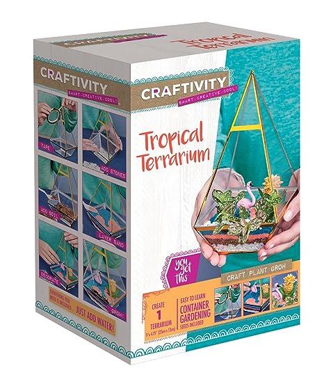 Amazon Com Craftivity Tropical Terrarium Kit Craft Kits For Teens