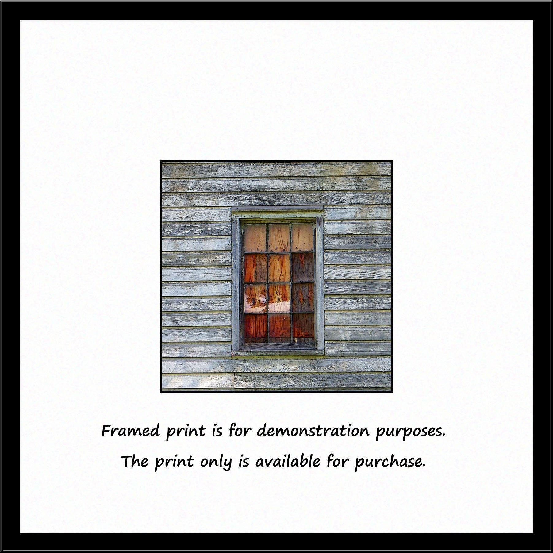 Barn Window with Plywood. A fine art photograph of an old barn window with stained plywood and weathered gray barn siding. A rustic find!