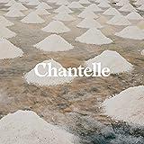 Chantelle Women's Soft Stretch Padded V-Neck Bra