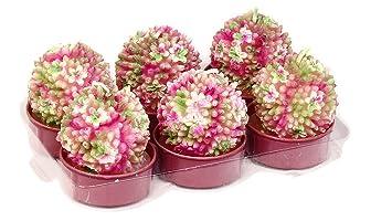 Deko Teelichter 6 Stück Blume Allium Rosa Amazonde Küche Haushalt