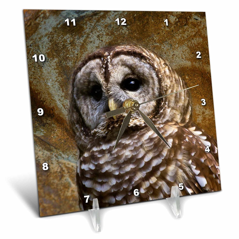 Birds home d/écor Barn Owl fine art image 3dRose Angel Wings Designs General Wildlife 6x6 Desk Clock dc/_48672/_1
