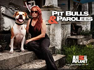 Pit Bulls And Parolees S07e08 Season 7 Episode 8 Blindsided