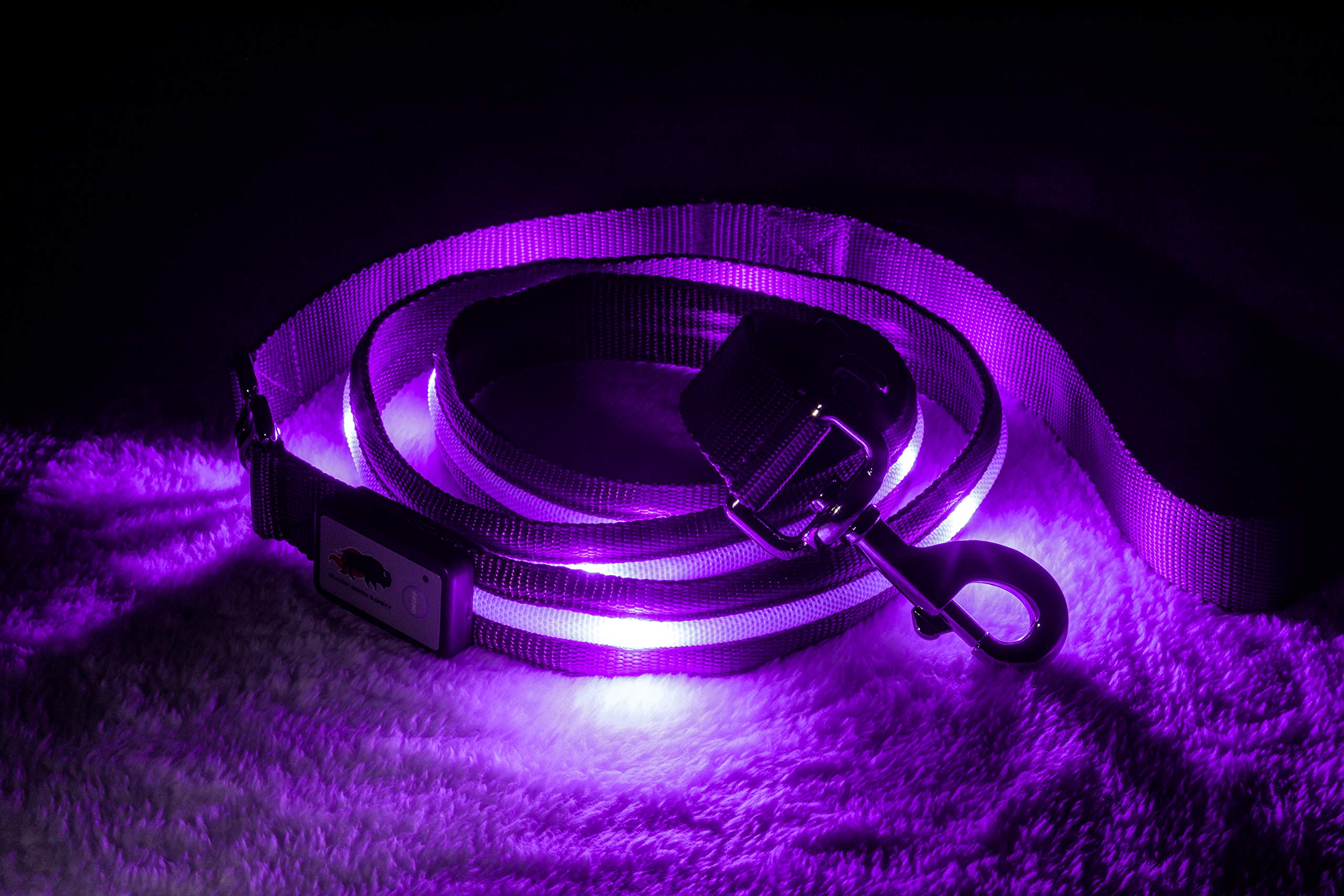 Blazin' Safety LED Dog Leash - USB Rechargeable Flashing Light, 6 Ft, Water Resistant - Avoid Danger - Purple by Blazin' Bison