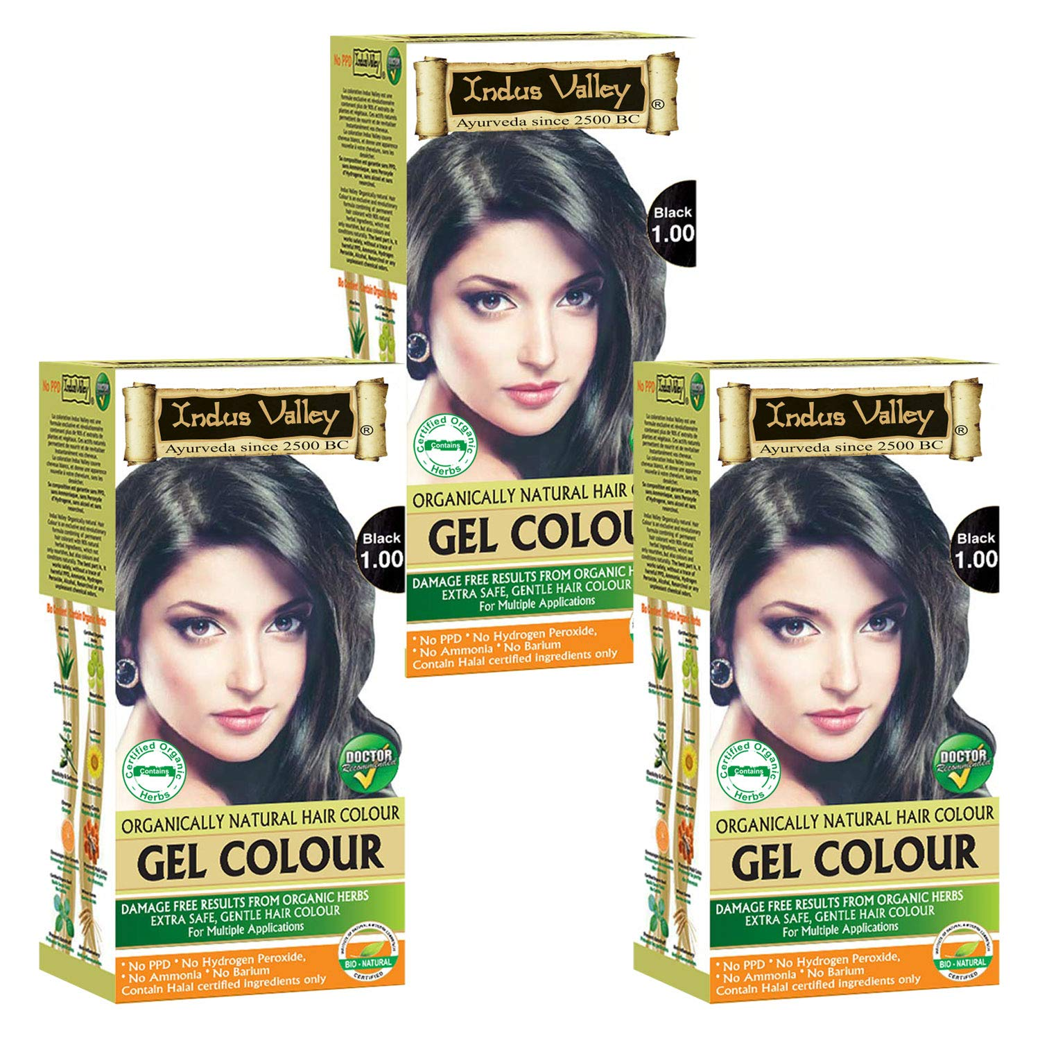 Indus Valley Ppd Free Ammonia Free No Hydrogen Peroxide Black 1 0 Hair Color Set Of 3