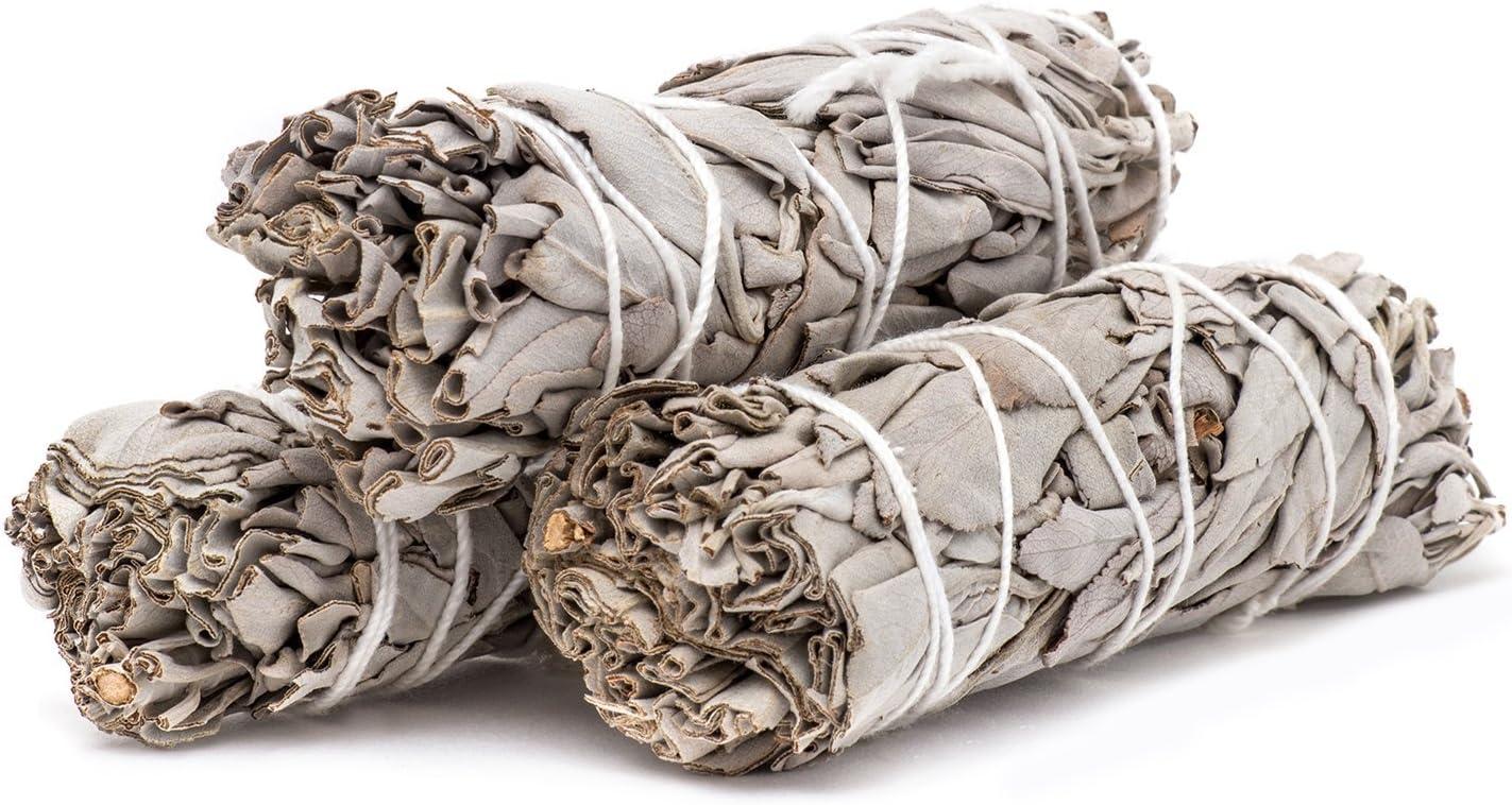 White Sage Bundles Sage Smudge Sticks f/ür die Reinigung von Heilungsmeditationen 9cm 40g Sage Smudge Wei/ßer Salbei Smudge Sticks