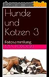 Hunde und Katzen 3: Fotosammlung (German Edition)