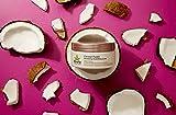 Hempz Coconut Fusion Herbal Shimmering Body