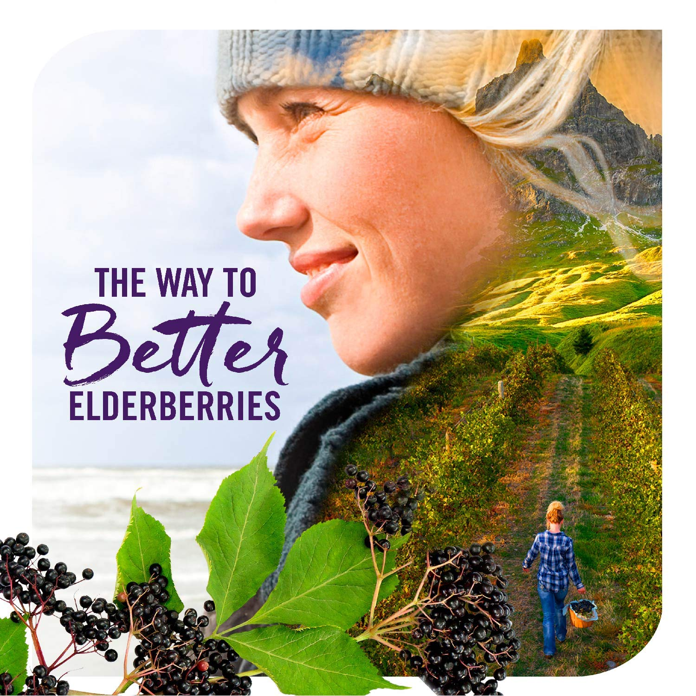 Nature's Way Sambucus Elderberry Gummies, Herbal Supplements with Vitamin C and Zinc, Gluten Free, Vegetarian, 60 Gummies by Sambucus (Image #11)