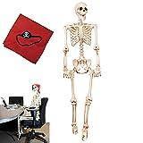 5 ft Pose-N-Stay Life Size Skeleton Full Body