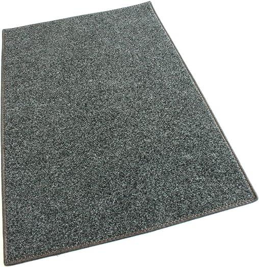 Koeckritz Rugs Smoke Carpet Area Rug 7 x9 Indoor Outdoor Durably Soft