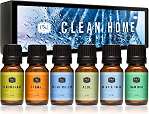 P&J Trading Fragrance Oil | Clean Home Set of 6 - Scented Oil for Soap Making, Diffusers, Candle Making, Lotions, Haircare, Slime, and Home Fragrance