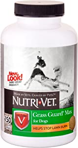 Nutri-Vet Grass Guard Max Chewables for Dogs| Dog Probiotic Supplement| Neutralizes Dog Urine to Prevent Lawn Spots | Protects Grass from Lawn Burn | 150 Chewable Tablets