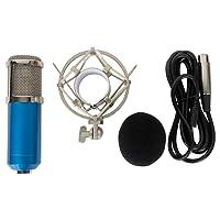 Generic BM-800 Sound Studio Recording Dynamic Professional Condenser Microphone Set (Blue)