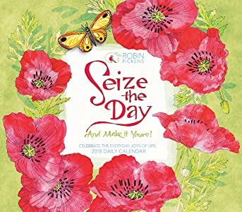 Seize The Day And Make It Yours - Robin Pickens 2018 Boxed/Daily Calendar (CB0263)