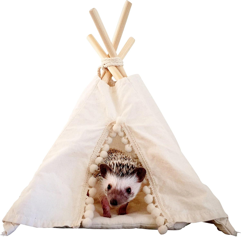 Hedgehog Teepee con una almohadilla, cobaya, pequeña mascota, pequeña casa de mascotas, cama para mascotas, tía para mascotas, teepee, tepee