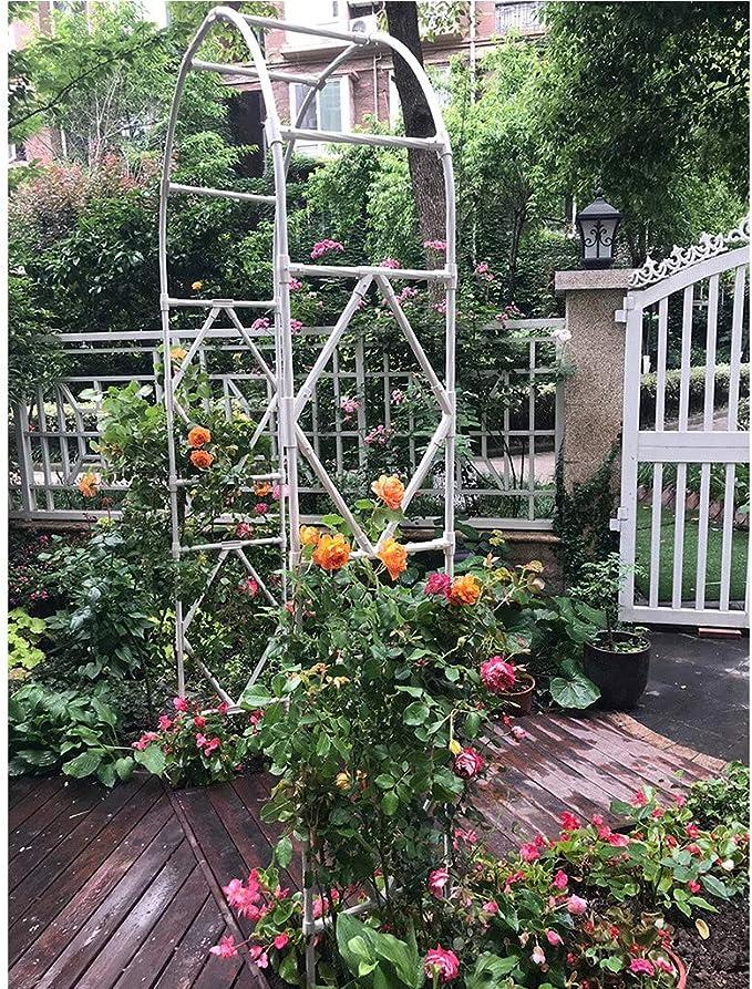 XLOO Garden Arbor Pergola Arch para Plantas trepadoras, Arcos ...