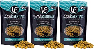 Vital Essentials Freeze Dried Grain Free Salmon Treats for Dogs - All-Natural Omega 3 & 6 for Immune Support - Heart Health - Shiny Coat - Allergy Support - All Breeds