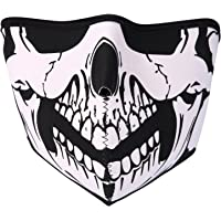Wind-Resistant Face Mask/& Neck Gaiter,Balaclava Ski Masks,Breathable Tactical Hood,Windproof Face Warmer for Running,Motorcycling,Hiking-Alter Ego