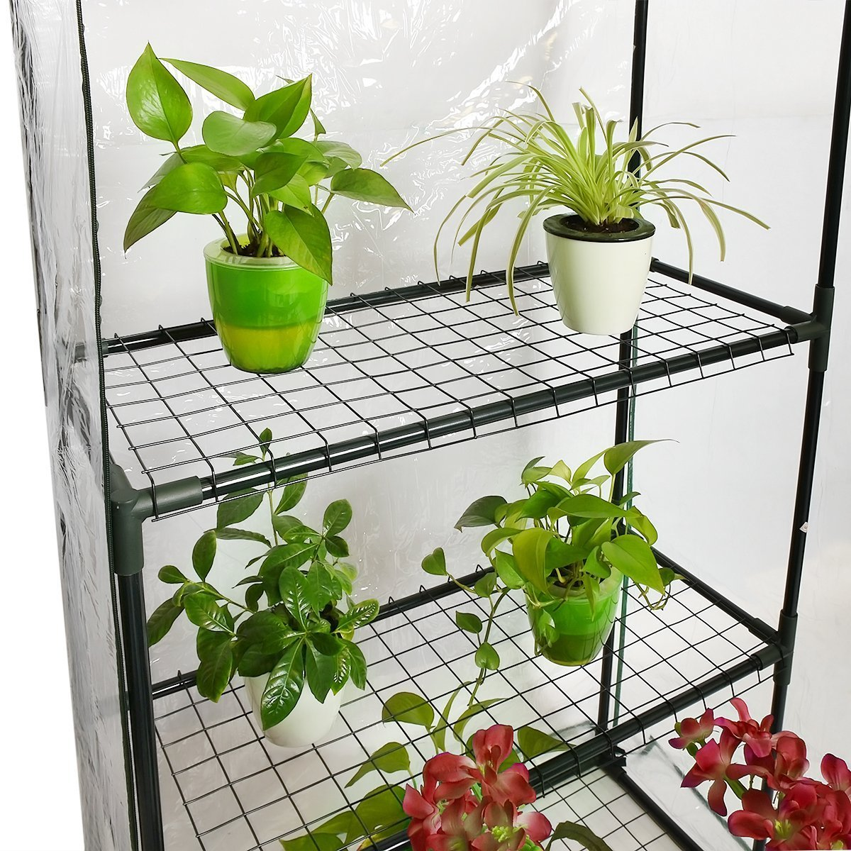 Quictent Greenhouse Mini Walk-in 3 tiers 6 shelves 102lbs Max Weight Capacity Portable Plant Garden Outdoor Green House 56''x29''x77'' by Quictent (Image #4)
