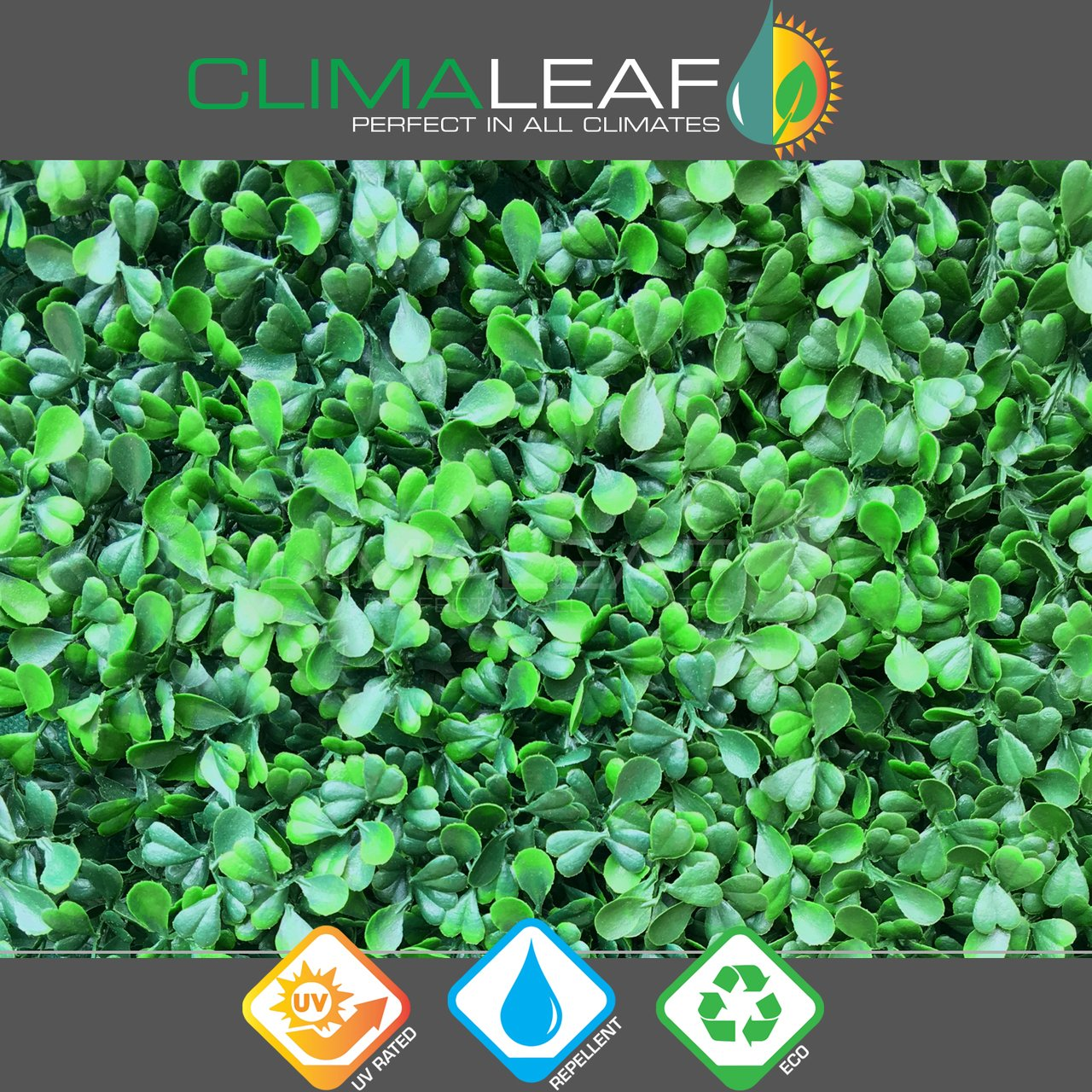 Climaleaf Artificial Uv Boxwood Light Green. 3yr warranty from fading.