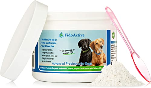 FidoActive Advanced Probiotics for Dogs with 40 Billion CFUs per Pouch Includes Enzymes and Prebiotic to Fortify The Immune System and Promote Healthy Digestion Skin and Coat