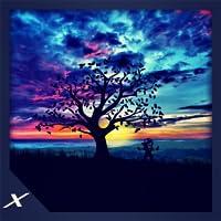 Animated Sun Rise Ambience - A Beautiful Morning