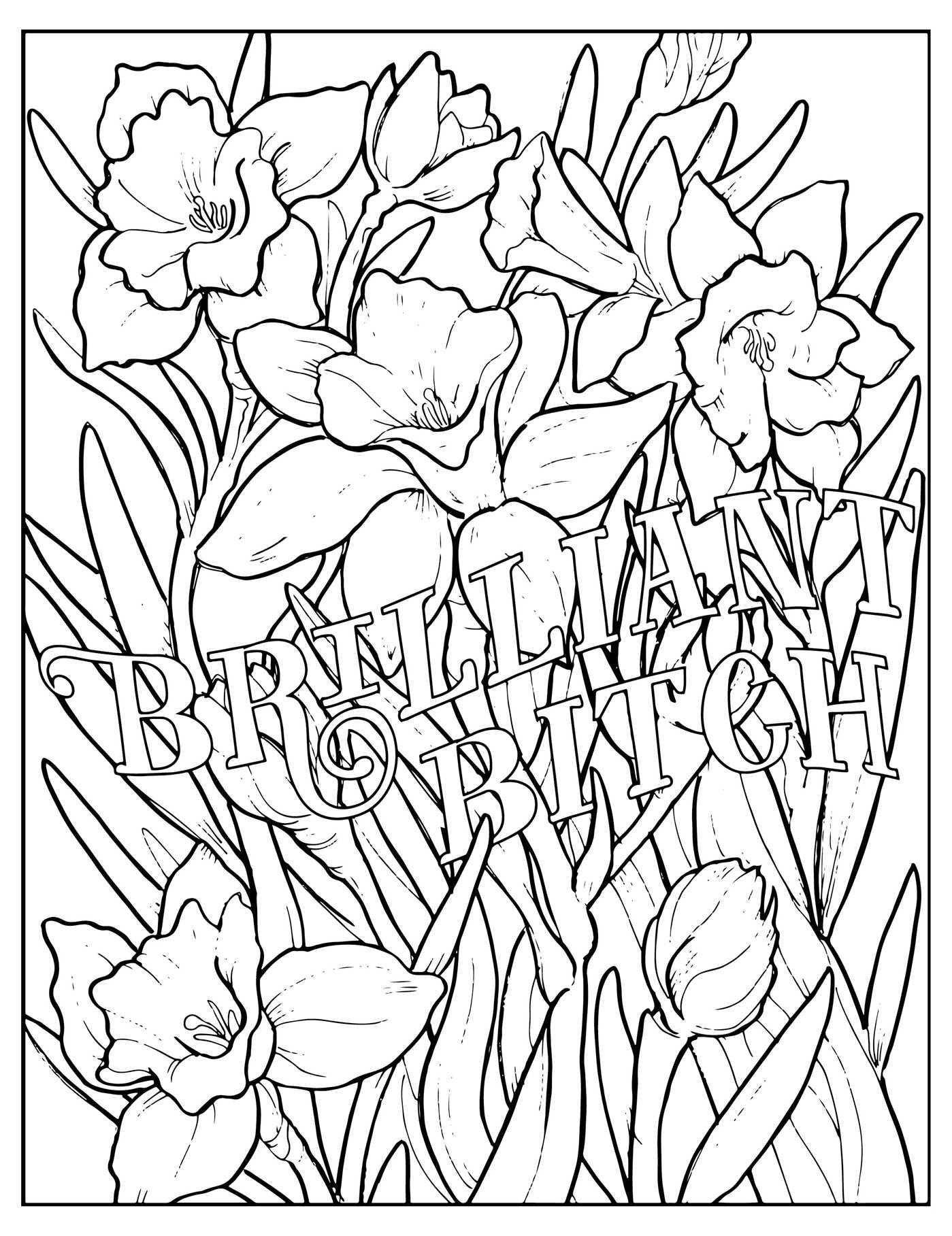 F word coloring pages - Fuck Off I M Coloring Unwind With 50 Obnoxiously Fun Swear Word Coloring Pages Dare You Stamp Company Dare You Stamp Co 9781604336610 Amazon Com